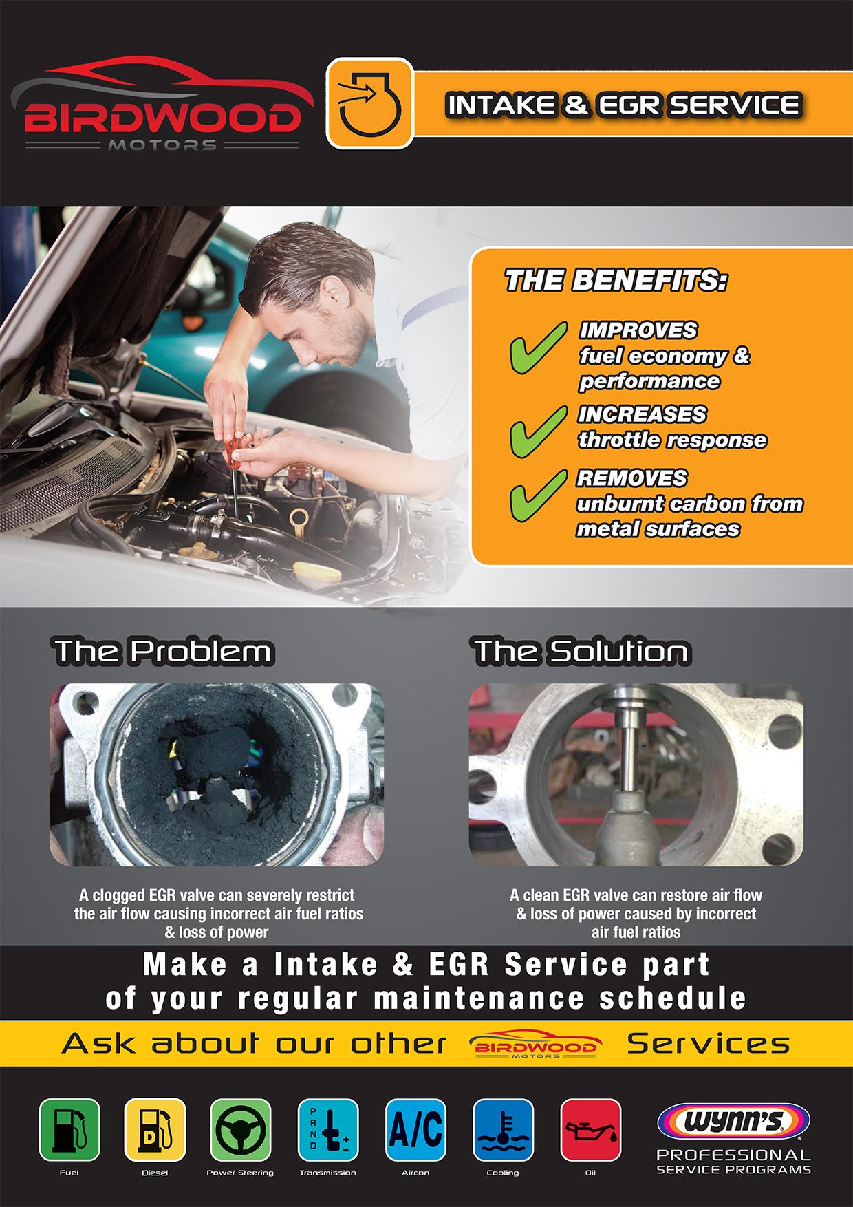 Intake & EGR System Service Poster (Birdwood)